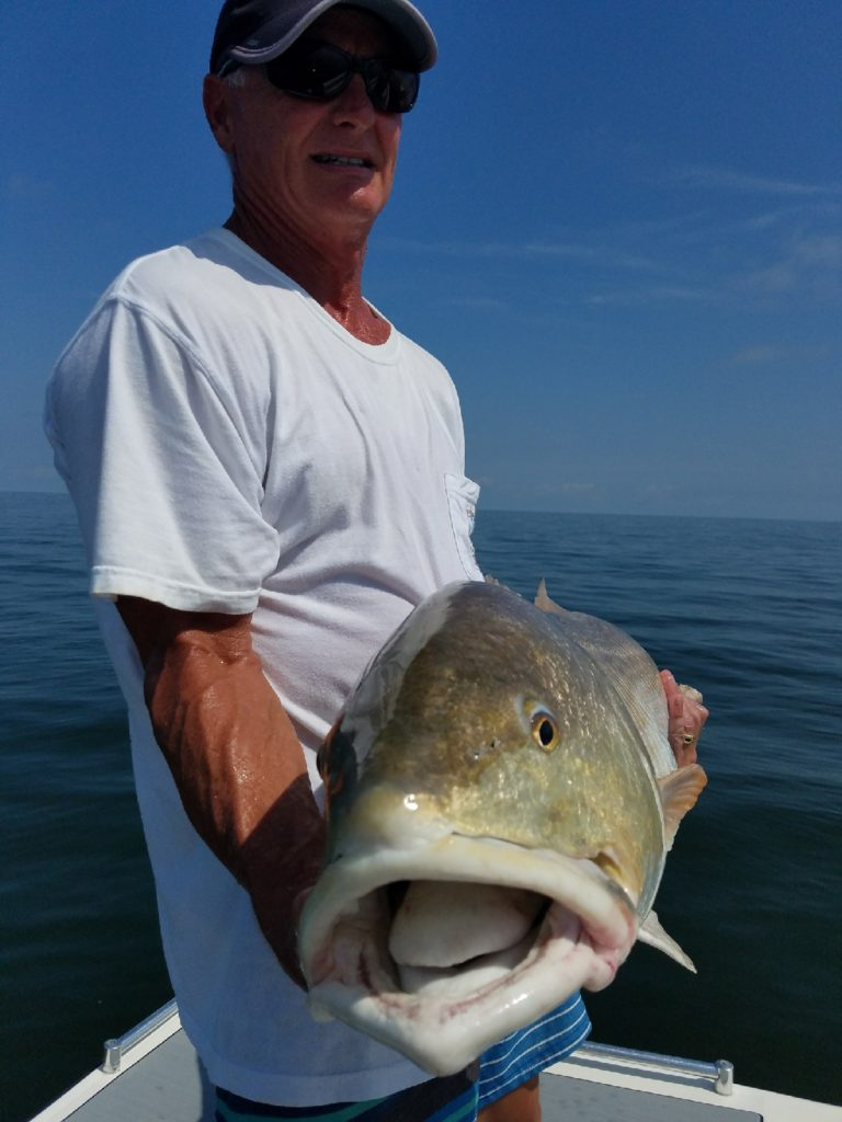 Inshore Light Tackle Fishing Red Drum, OBX Charter Fishing