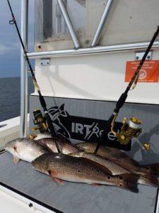 IRT Reels, Inshore fishing